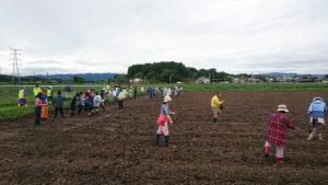 福島県南相馬市で菜の花種まき